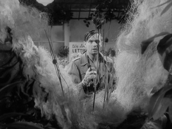 Still from <em>Little Shop of Horrors</em>, 1960.