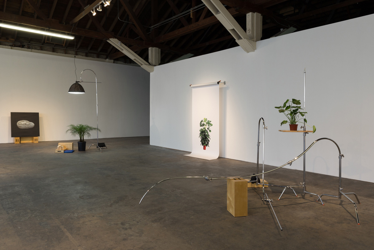 Kerry Tribe, <em>The Loste Note</em>, 2015 (installation view). Photo: Fredrik Nilsen Studio. Courtesy the artist and 356 S. Mission Rd.